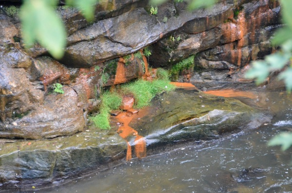rust and green on rocks